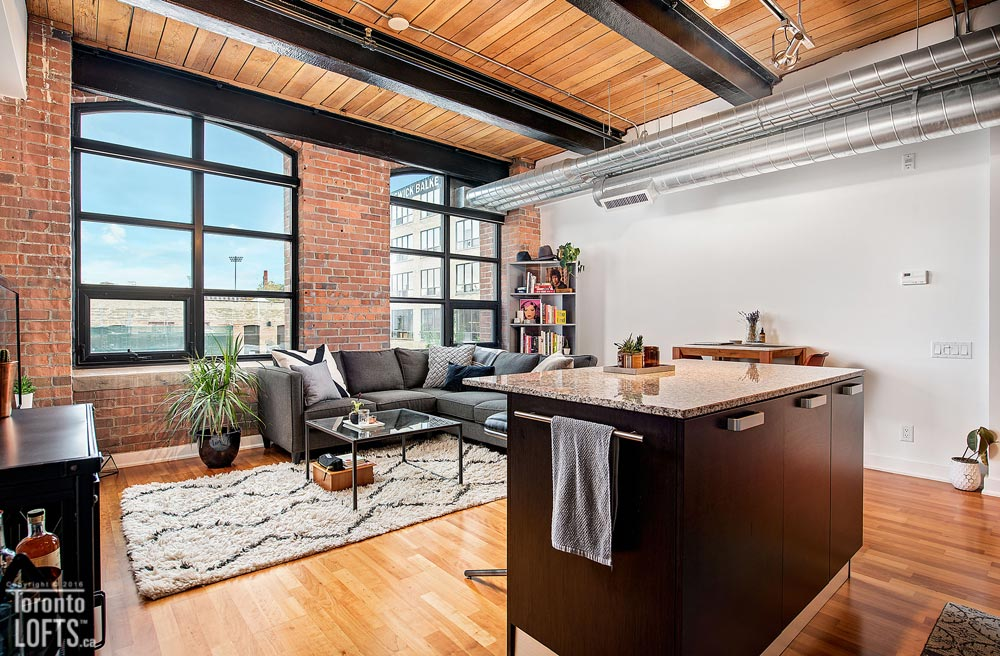 Toy Factory Lofts-43 Hanna Ave #229