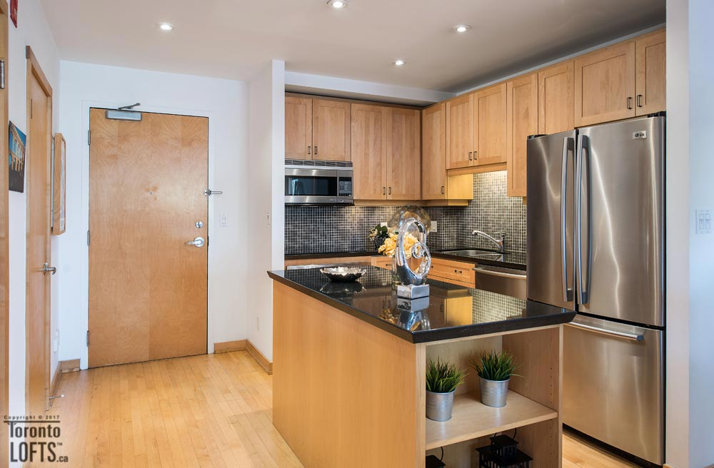 Tecumseth Lofts-766 King St W #209